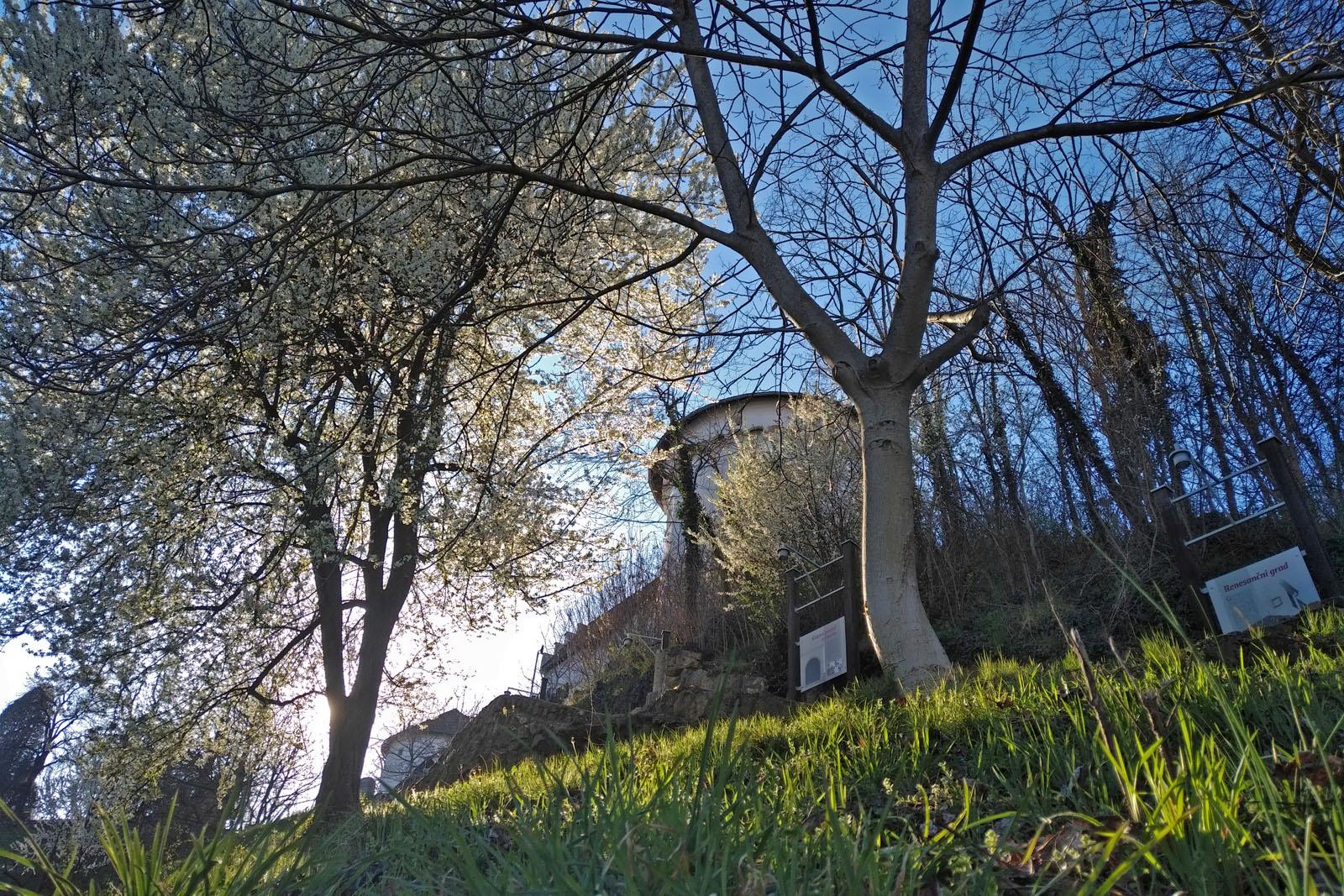 Raziščite zgodovino Velenjskega gradu